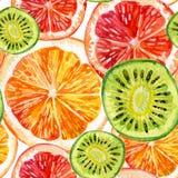 Waterverfreeks van verse sinaasappel, kiwi en grapefruit stock illustratie