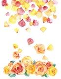 Waterverfrozen en bloemblaadjes stock illustratie