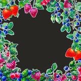 Waterverfsamenstelling met bessen wordt geplaatst die Royalty-vrije Stock Foto