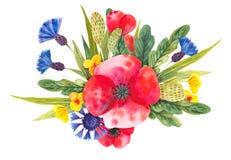 Waterverfsamenstelling met verschillende heldere wilde bloemen vector illustratie