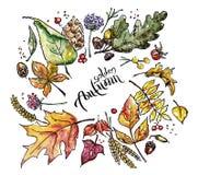 Waterverfschets van de herfstbladeren royalty-vrije illustratie