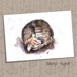 Waterverfschets van een Kat van het Slaaphuis Stock Foto
