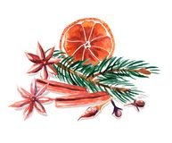 Waterverfstilleven van droge sinaasappel, spar, kaneel, anijsplant en kruidnagels Stock Fotografie