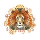 Waterverftekening van een dierlijke zoogdier roofdier, rode leeuw, rode manen, leeuw-koning van dieren, portret van grootheid, st stock illustratie