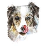 Waterverftekening van een hondcollie in de sneeuw, sneeuwvlokken, het likken, roze tong, portret van een hond, de winterkoude, vo Stock Fotografie