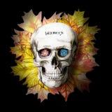 Waterverftekening van een menselijke schedel voor Halloween met de herfst gele bladeren en bloemen in de oogkassen voor druk, dec Royalty-vrije Stock Afbeeldingen