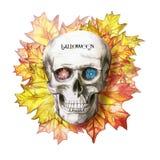 Waterverftekening van een menselijke schedel voor Halloween met de herfst gele bladeren en bloemen in de oogkassen voor druk, dec Stock Afbeeldingen