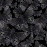 Waterverftekening van een vlinder van de vlindernacht, een vreselijke vlinder op een Halloween-vakantie met een schedel op zijn v Royalty-vrije Stock Foto