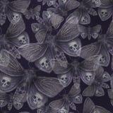 Waterverftekening van een vlinder van de vlindernacht, een vreselijke vlinder op een Halloween-vakantie met een schedel op zijn v Stock Foto's