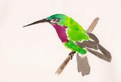 Waterverftekening van kolibrie Stock Foto's