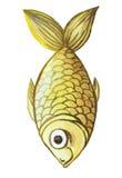Waterverftekening van vissen, gele, gele vissen, in de stijl van kinderen` s tekening Stock Foto