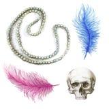 Waterverftekening, veren, blauwe veer, roze veer, menselijke schedel, voor Halloween Royalty-vrije Stock Foto