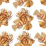 Waterverfvissen Overzeese vissen vastgestelde illustratie Stock Foto's
