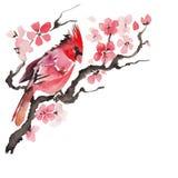 Waterverfvogel op een bloeiende tak Royalty-vrije Stock Fotografie