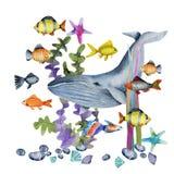 Waterverfwalvis en oceanic tropische exotische vissen onder de zeewierenillustratie vector illustratie