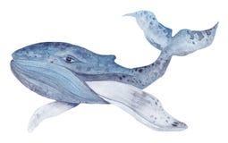 Waterverfwalvis het Schilderen Royalty-vrije Stock Fotografie