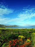 Waterville Co. Kerry Irland Royaltyfri Bild
