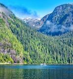 Watervliegtuig op Mysty-Fjorden Stock Fotografie