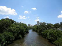 Waterway leading to Waikiki surrounded by trees Stock Images