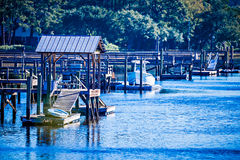 Waterway and marsh views on johns island south carolina. Waterway and marsh views on johns island  south carolina Royalty Free Stock Image