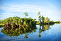 Waterway reflections. Trees and sky reflected off still waters Royalty Free Stock Photos