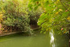 Waterway. A waterway in Shanghai China with green leafed trees and shrubs in either side and lined with a concrete fence that is over grown with green shrubs stock image