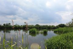 Waterway, Sky, Wetland, Nature Reserve royalty free stock photos