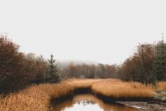 Waterway, Wetland, Reflection, Nature Reserve stock images