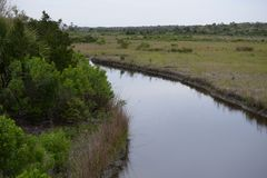 Waterways flow throughout the Egans Creek Greenway on Amelia Island, Florida. Amelia Island`s Egans Creek Greenway offers an array of beautiful wildlife from stock image