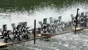 Waterwheel stock video