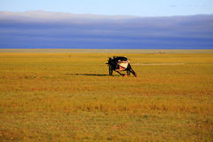 Waterwheel on the grasslands of Inner Mongolia Royalty Free Stock Image