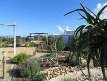 Waterwise-Garten Lizenzfreies Stockbild