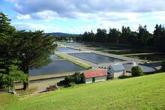 waterworks Arkivfoto