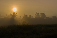 Watery Sun. A watery sun shines through the mist at sunrise in Northern Thailand Stock Photography