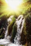 Wateterfall nei laghi profondi Plitvice della foresta La Croazia Fotografia Stock