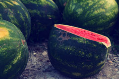 Wathermelon immagine stock libera da diritti