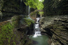 Watkins Glen Royalty Free Stock Photo