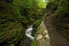 Watkins Glen Beauty. Located in Watkins Glen NY, this stunning trail takes you through Watkins Glen State Park. There are several styles of waterfalls which are stock photography