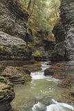 Watkins Glen Gorge Royalty-vrije Stock Afbeeldingen