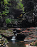 Watkins Glen Gorge Fotos de Stock
