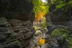 Watkins Glen Gorge Trail Royalty Free Stock Images