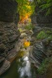 Watkins Glen Gorge Trail Royalty Free Stock Photography