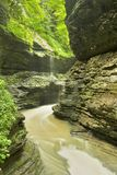 Watkins Glen Gorge Stock Image