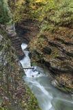 Watkins Glen Layered Gorge arkivbild