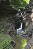 Watkins Glen State Park Fotografering för Bildbyråer