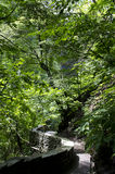 Watkins Glen State Park Imágenes de archivo libres de regalías