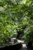 Watkins Glen State Park Immagini Stock Libere da Diritti