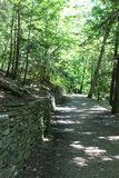 Watkins Glen State Park Indian Trail. Woodland walking trail along the top of the gorge. Finger Lakes region of New York State stock images