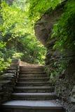 Watkins Glen State Park Stone Staircase Fotografia Stock Libera da Diritti