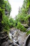 Watkins Glen State Park Stream 4 Fotografie Stock